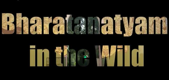 Bharatanatyam in theWild