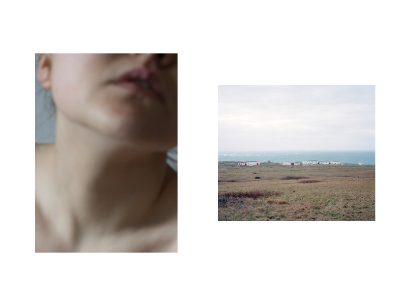 'Landscapes' by LauraDow